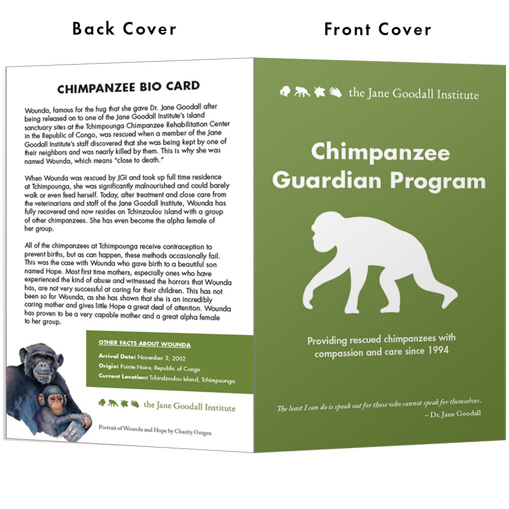 Become a Chimp Guardian for Wounda - Wounda
