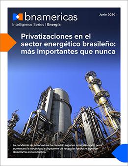 Privatizaciones en el sector energético brasil...