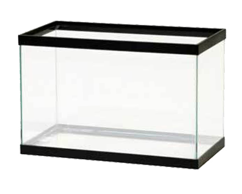 Picture of Perfecto Black Tank - 5.5 Gallon Tank Only