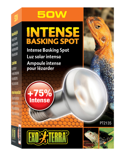 Picture of Exo Terra Intense Basking Spot Lamp - 50 Watt