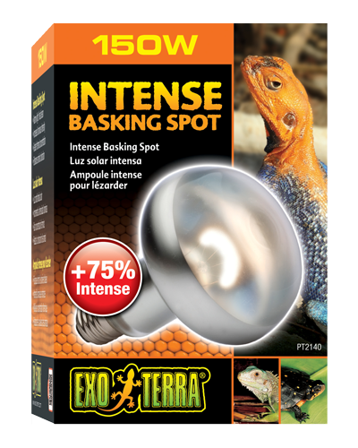 Picture of Exo Terra Intense Basking Spot Lamp - 150 Watt
