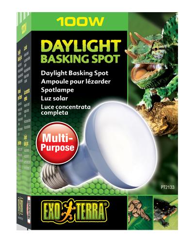 Picture of Exo Terra Daylight Basking Spot Lamp - 100 Watt