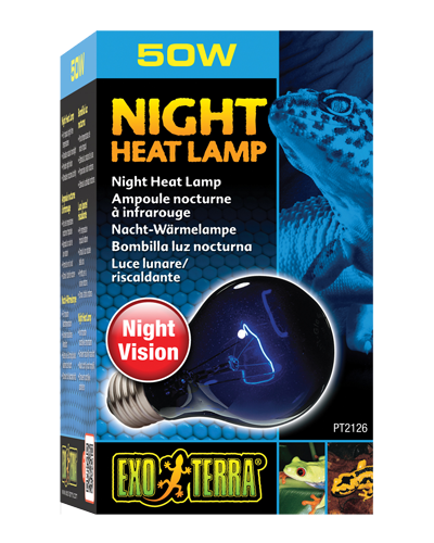 Picture of Exo Terra Night Heat Lamp Incandescent Bulb - 50 Watt