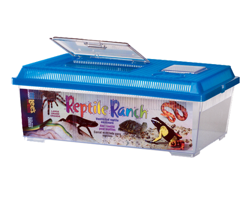 Picture of Lee's Reptile Ranch Rectangle with Lid Large