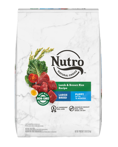 Picture of Nutro Wholesome Essentials Puppy Large Breed Pasture-Fed Lamb & Rice - 30 lbs.