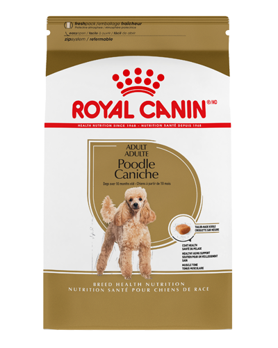 Picture of Royal Canin Adult Poodle Formula - 10 lbs.