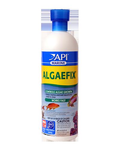 Picture of API Marine AlgaeFix - 16 oz