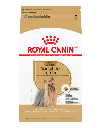 Picture of Royal Canin Adult Yorkshire Terrier Formula - 10 lbs.