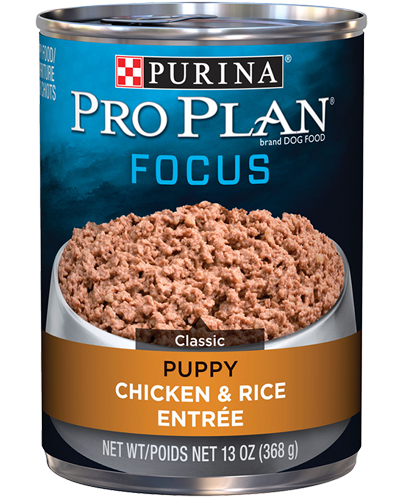 Picture of Purina Pro Plan Focus Puppy Chicken & Rice Entrée - 13 oz.