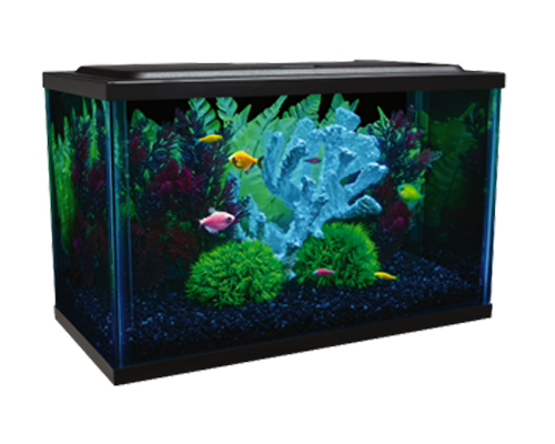 Picture of Tetra Glofish Aquarium Kit - 3 Gallon