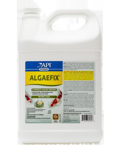 Picture of API Pond Algaefix Algae Control - 1 gal
