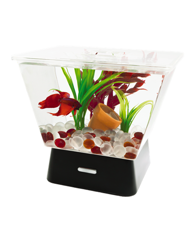 Picture of Tetra LED Betta Tank Kit - 1.1 Gallon