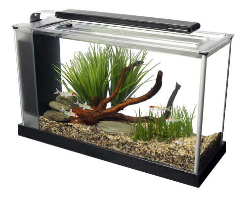 Picture of Fluval Spec Aquarium Kit Black - 5 Gallon