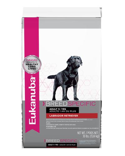 Picture of Eukanuba Breed Specific Adult Labrador Retriever Formula - 30 lb.