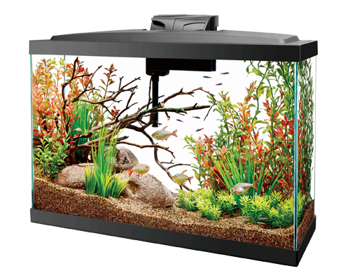 Picture of Aqueon Widescreen LED Kit - 13 Gallon