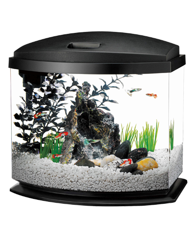 Picture of Aqueon MiniBow Black LED Kit - 5 Gallon