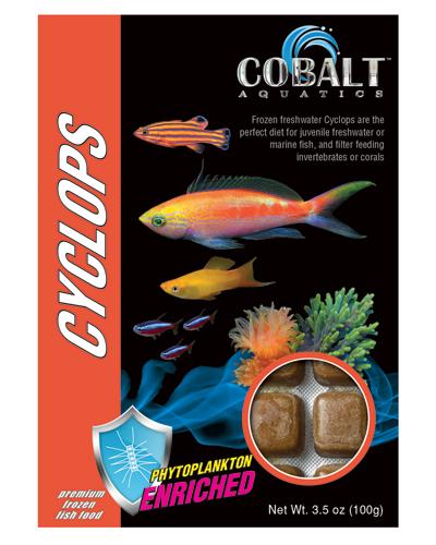 Picture of Cobalt Frozen Cyclops Cubes - 3.5 oz.