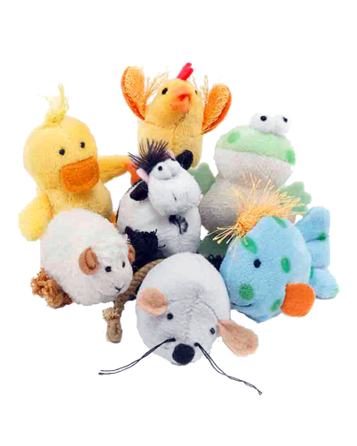 Picture of MultiPet Look Who's Talking Toy - Assorted