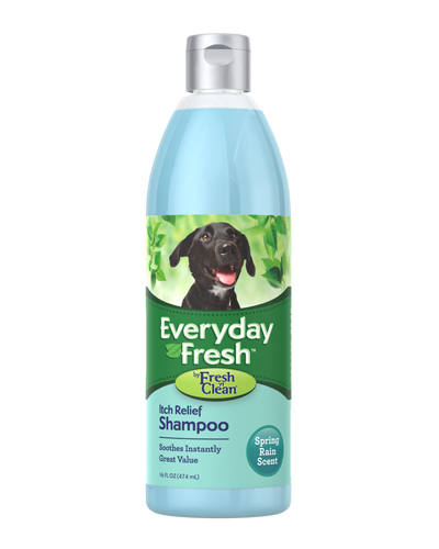 Picture of Fresh 'n' Clean Everyday Fresh Itch Relief Shampoo - 16 oz