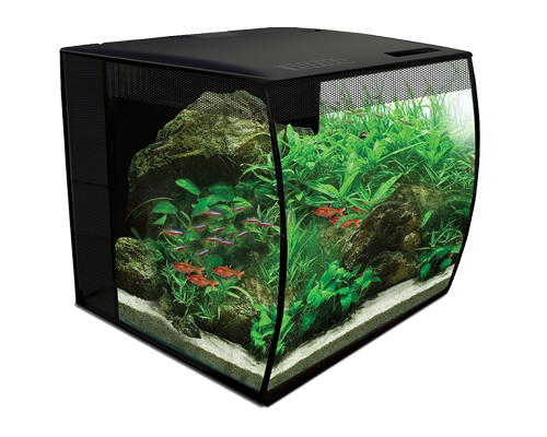 Picture of Fluval Flex Aquarium Kit Black - 15 Gallon