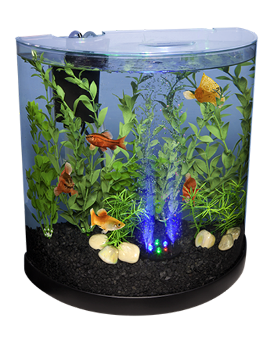 Picture of Tetra Bubbling Halfmoon LED Kit - 3 Gallon