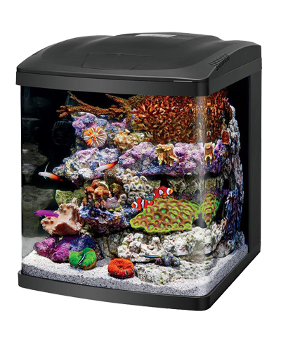Picture of Coralife LED BioCube Aquarium - 32 Gallon