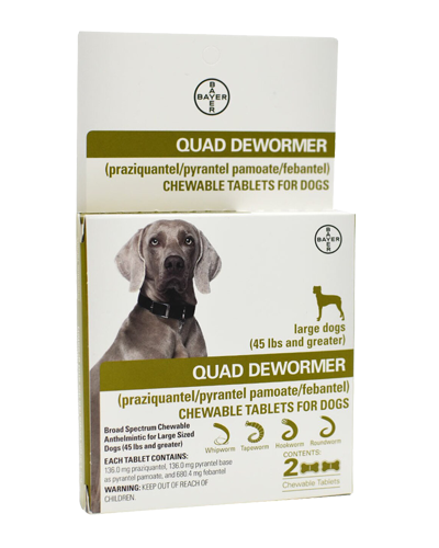 Picture of Bayer Quad Dewormer Tablets for Large Dogs - 2 Ct