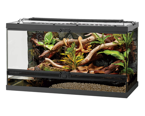 "Picture of Zilla Front Open Terrarium - 36"" x 18"" x 20"""