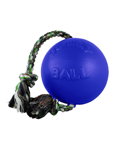 Picture of Jolly Pet Romp 'n' Roll Ball Blue - 6""