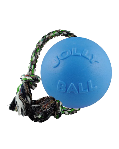 Picture of Jolly Pet Romp 'n' Roll Blueberry Ball - 4.5""