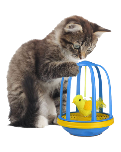 Picture of Our Pets Bird in a Cage Electronic Toy
