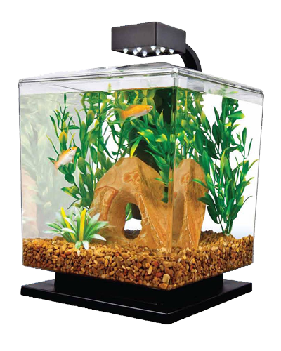 Picture of Tetra Water Wonders Aquarium Kit Black - 1.5 Gallon