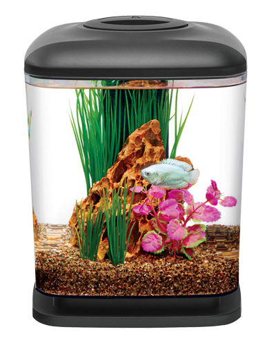 Picture of Aqueon MiniCube LED Desktop Aquarium Kit - 1.6 Gallon