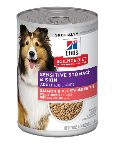Picture of Hill's Science Diet Adult Sensitive Stomach & Skin Salmon & Vegetable Entrée Canned Dog Food - 12.8 oz.