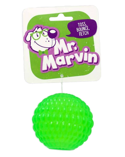 Picture of Four Paws Mr. Marvin Fetch Bouncy Ball