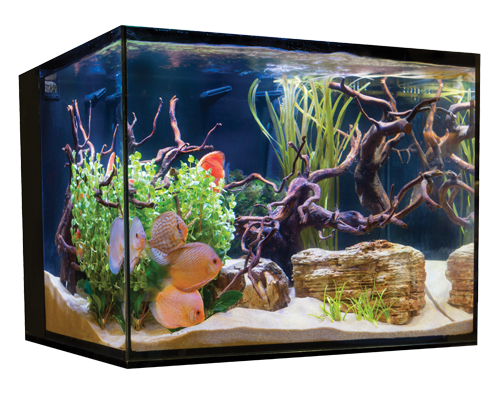 Picture of Cobalt C-Vue Aquarium Kit - 45 Gallon