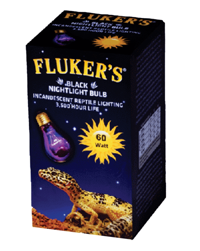 Picture of Fluker's Black Nightlight Incandescent Bulbs For Reptiles - 60 Watt