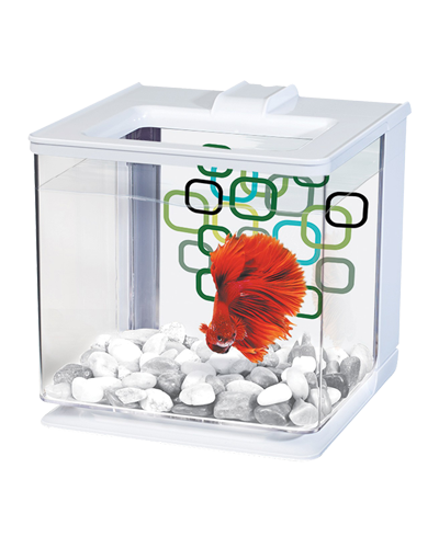 Picture of Marina Betta EZ Care Aquarium Kit White - .7 Gallon