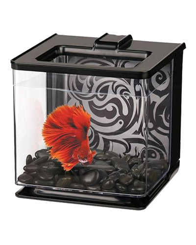 Picture of Marina Betta EZ Care Aquarium Kit Black - .7 Gallon