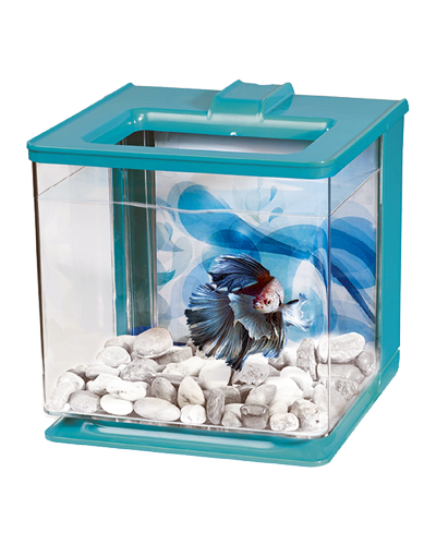 Picture of Marina Betta EZ Care Aquarium Kit Blue - .7 Gallon