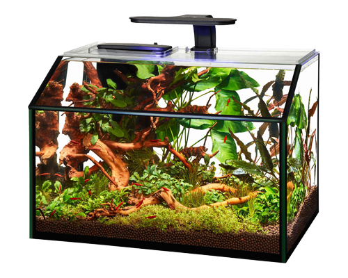 Picture of Aqueon Designer LED Shrimp Aquarium Kit - 8.75 Gallon
