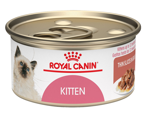 Picture of Royal Canin Kitten Thin Slices in Gravy Canned Cat Food - 3 oz.
