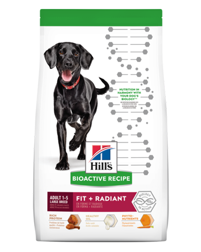 Picture of Hill's Bioactive Recipe Adult Large Breed Fit and Radiant - 22.5 lb.