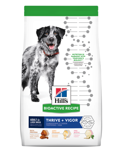Picture of Hill's Bioactive Recipe Adult 6+ Large Breed Thrive and Vigor - 22.5 lb.