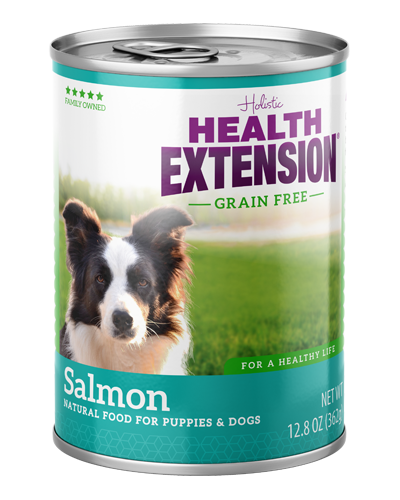 Picture of Health Extension Grain Free 95% Salmon - 12. 8 oz.