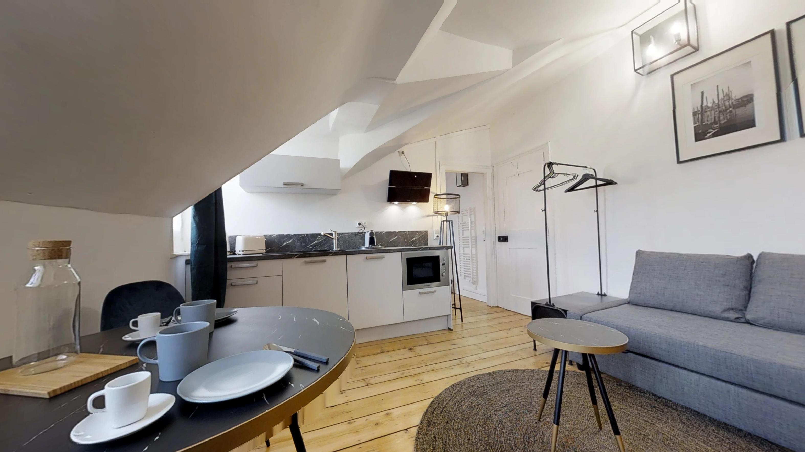 Location saisonnière Appartement meublé Metz  1 piéces