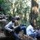 21696 mau a malwai woods
