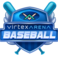 59936 virtexarena baseball