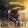16168 brushy13 destinycoverart