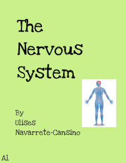 The Nervous System Storybook Cover